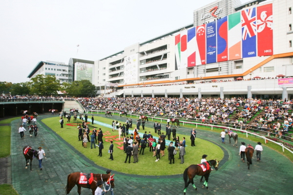 Korea Racing Authority to host three international horse races this year