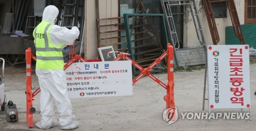 S. Korea begins culling 120,000 poultry over bird flu