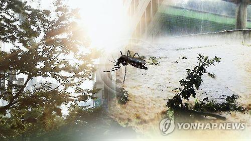 Nine in 10 malaria infections reported in inter-Korean border areas