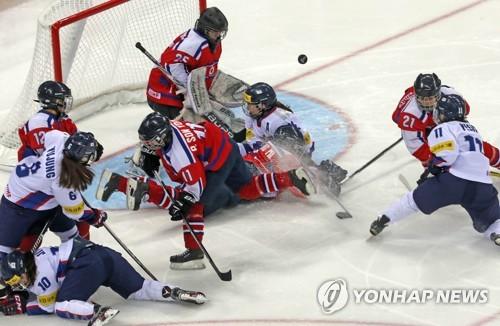 Fan files petition at human rights watchdog over push for joint Korean hockey team