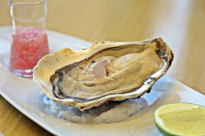 Oyster spotlight at IL PONTE