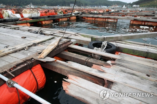 S. Korea working to recover from damage caused by Typhoon Lingling