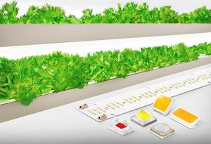 Samsung Elect Co. showcases a new lineup of horticulture LED solutions